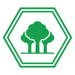 Forest - icon